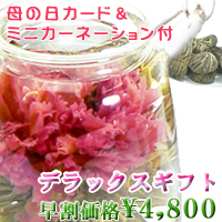 アジアンポット&工芸茶「デラックスギフト」(工芸茶16粒入)