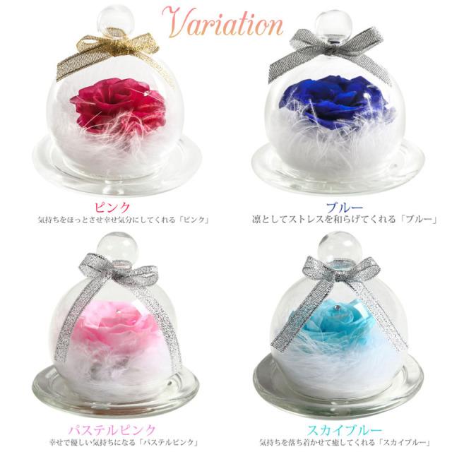 カラーバリエーション:ピンク、ブルー、パステルピンク、スカイブルー