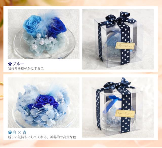 カラーバリエーション:濃い青・白×青