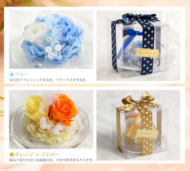 カラーバリエーション:白×水色・オレンジ×イエロー
